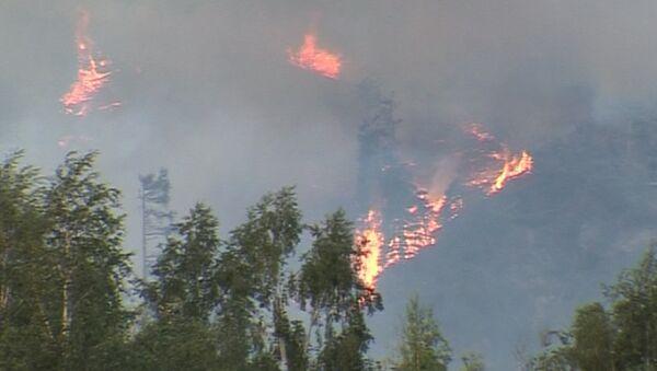 Национальный парк под Алма-Атой утонул в дыму от пожара