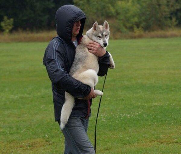 Хозяин с собакой. Архив