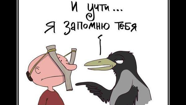 Ворона не злая. Но память у нее хорошая