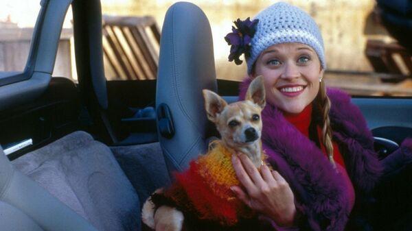 Кадр из фильма Блондинка в законе
