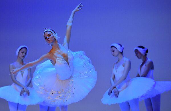 Артисты Королевского Русского Балета на репетиции балета Лебединое озеро в Боготе