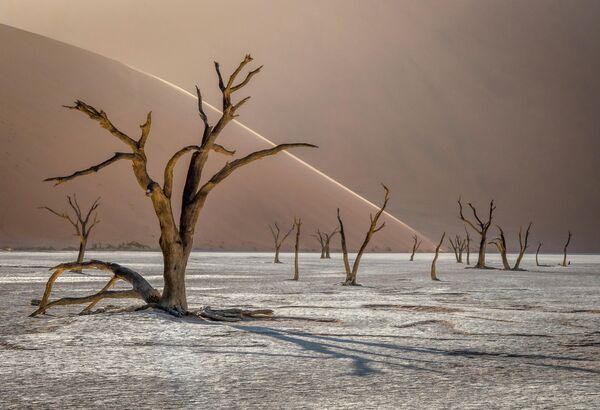 Tomasz Szpila. ТОП-101 конкурса The International Landscape Photographer of the Year 2019
