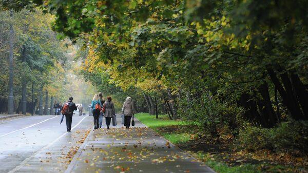 Парк Сокольники в Москве. Архивное фото