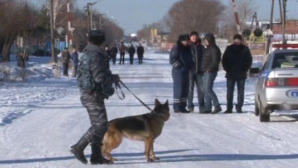 Сотрудник полиции с собакой дежурит у исправительной колонии №6 города Копейска Челябинской области