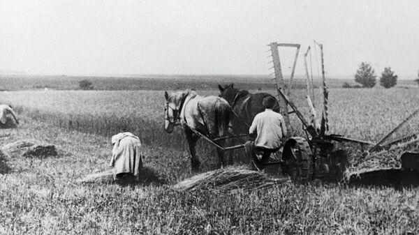 Работа на поле