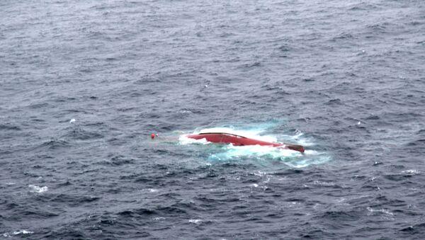 Поиски членов экипажа с судна Шанс-101, перевернувшегося в Японском море