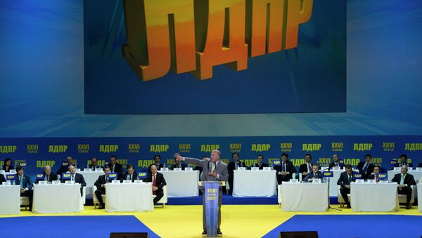 Партия ЛДПР. Архивное фото