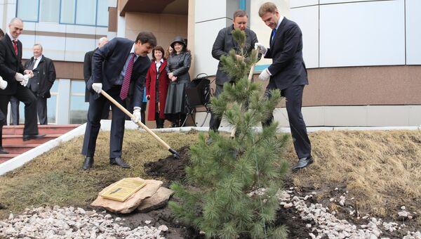 Кедр посадили в Красноярске в память 50-летия визита Юрия Гагарина