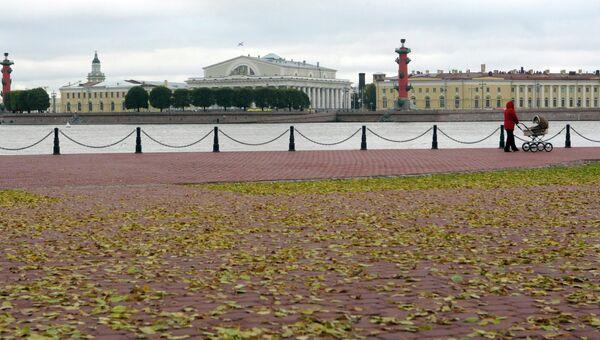 Вид на здание Биржи и Ростральные колонны на стрелке Васильевского острова, архивное фото.