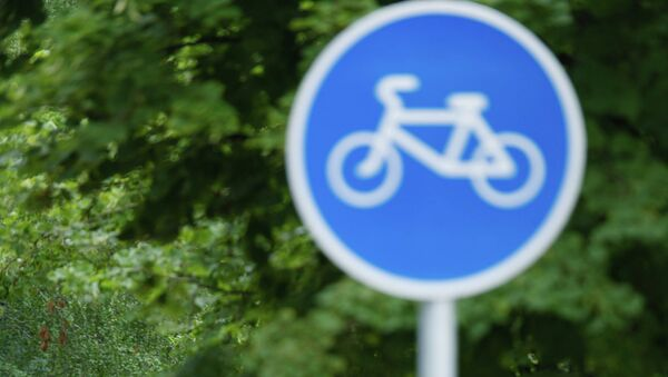 Велосипедная дорожка на Воробьевской набережной в Москве. Архивное фото