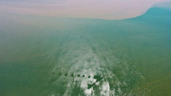 Неизвестные круги в дельте реки Селенга. Архивное фото