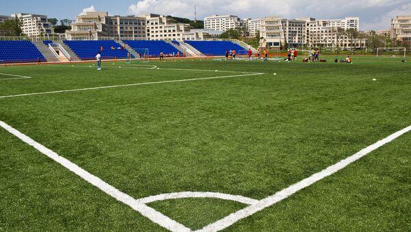 Футбольное поле. Архивное фото