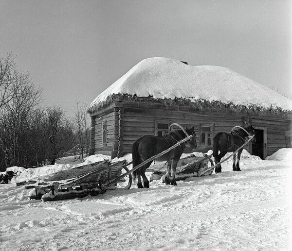 Кучерская изба музея-усадьбы Льва Толстого