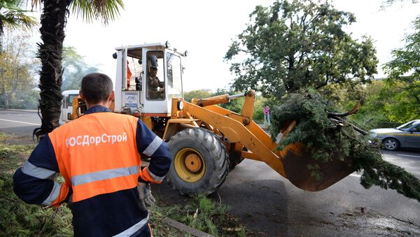 Работники коммунальных служб Сочи ликвидируют последствия урагана. Фото с места события