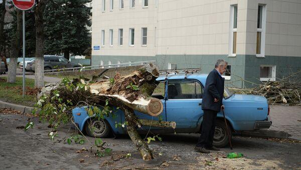 Последствия урагана Святой Иуда в Великом Новгороде