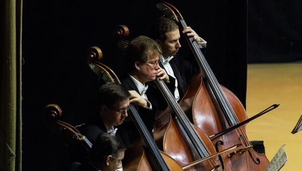 Концерт Симфонического оркестра Мариинского театра. Архивное фото