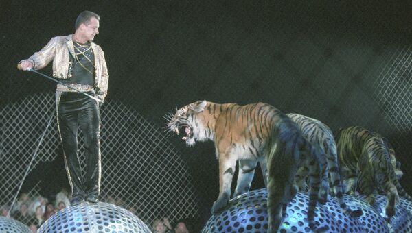Аттракцион Тигры на зеркальных шарах под руководством Мстислава Запашного. Архивное фото