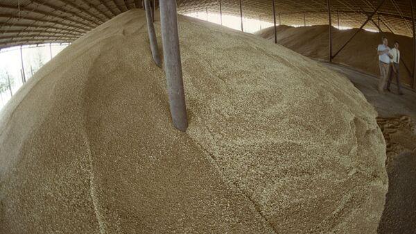 Зерно в зернохранилище