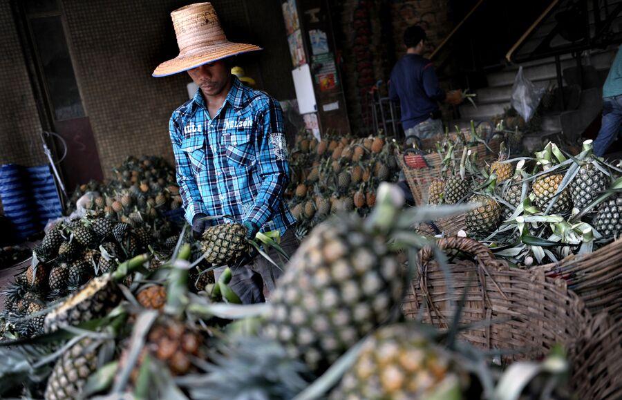 Тайланд, заготовка ананасов