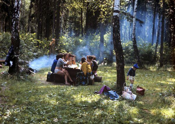 На отдыхе в подмосковном лесу