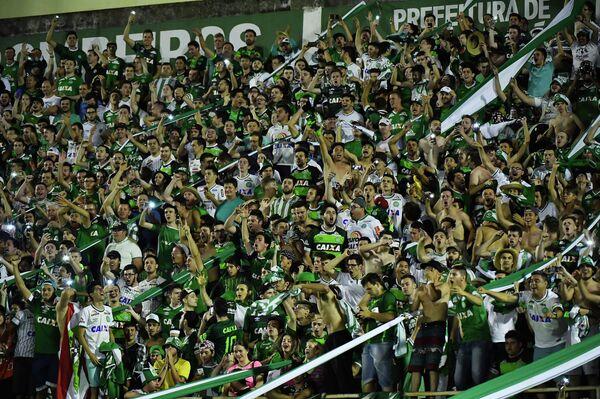 Болельщики футбольного бразильского клуба Шапекоэнсе
