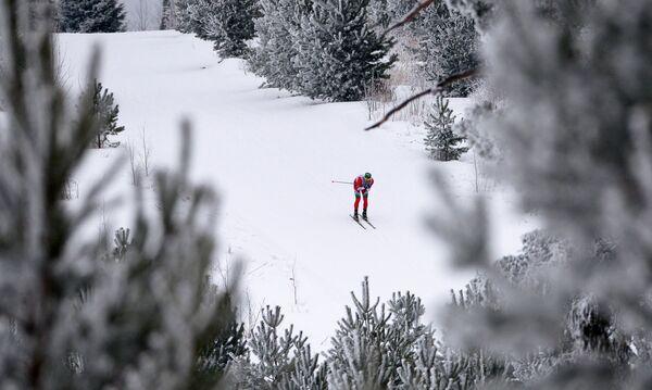 Лыжные гонки и лыжник