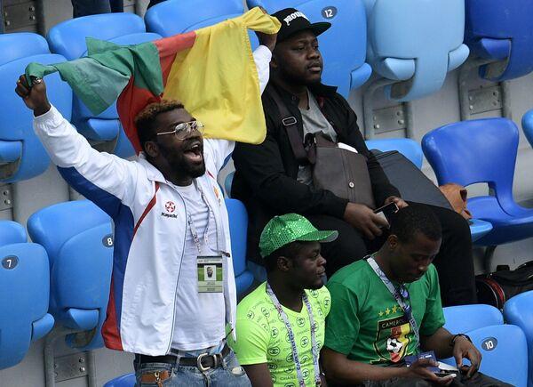 Болельщики сборной Камеруна