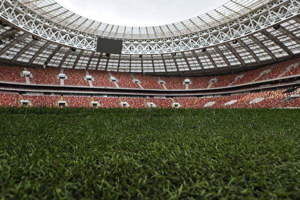 Поле на Большой спортивной арене Лужники