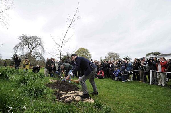 Глава LOCOG Себастьян Коу участвует в посаде первого из 40 дубов в парках Лондона