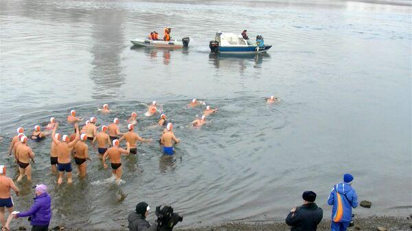 Тридцать моржей проплыли по Енисею за факелоносцем ОИ-2014