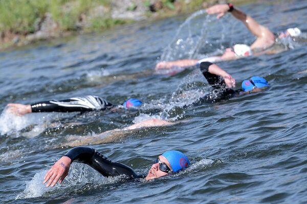 Международные соревнования по плаванию на открытой воде Кубок Чемпионов