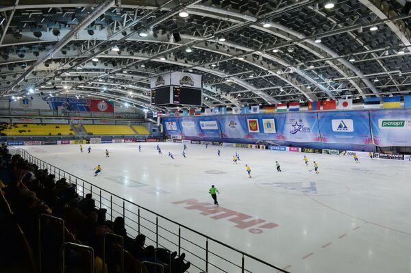 Эпизод матча группового этапа чемпионата мира по хоккею с мячом между сборными командами Швеции и Финляндии в Ульяновске