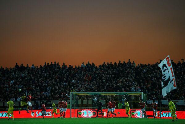Игровой момент матча чемпионата Португалии по футболу Пасуш - Бенфика