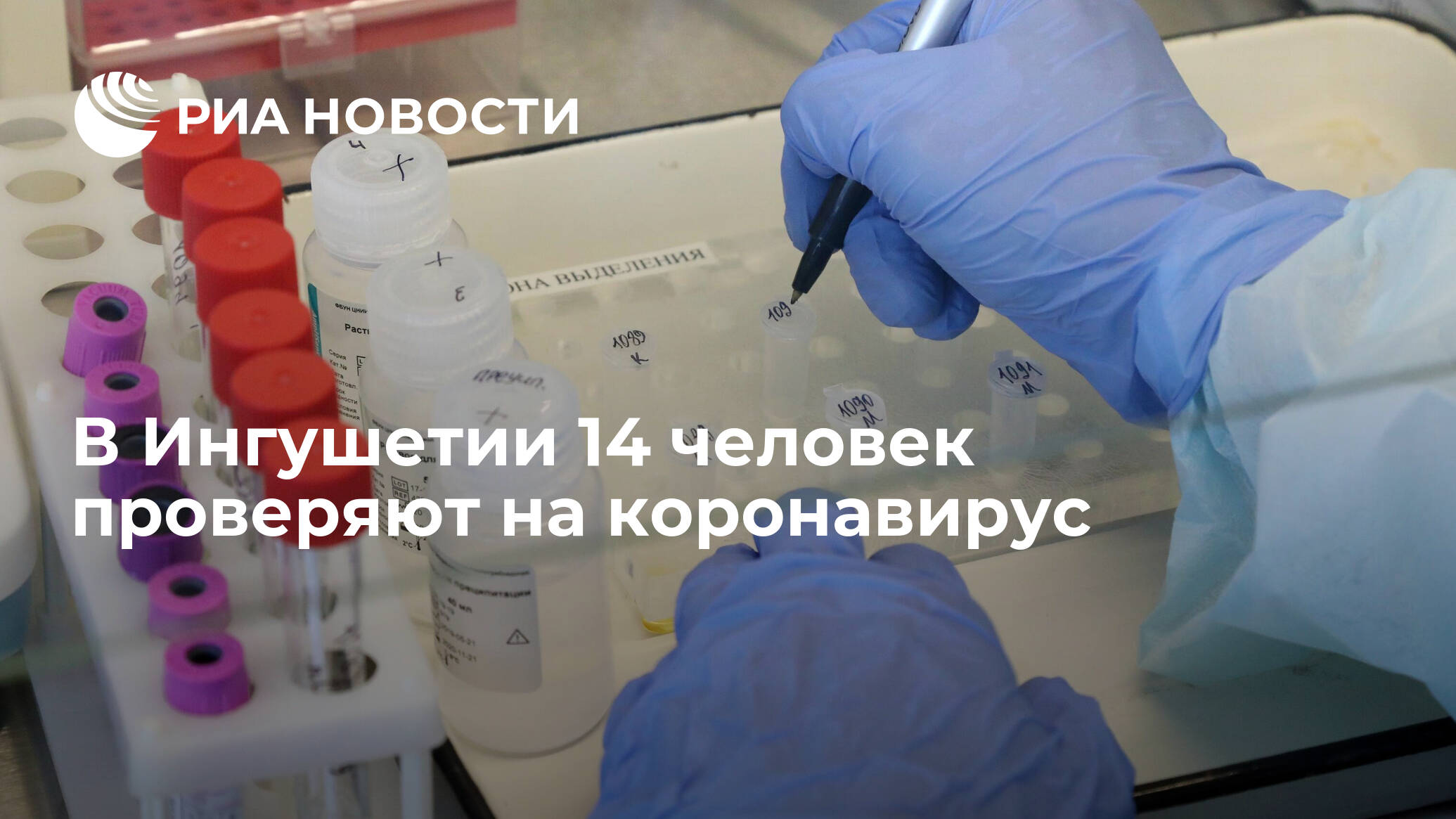 новости нальчика коронавирус