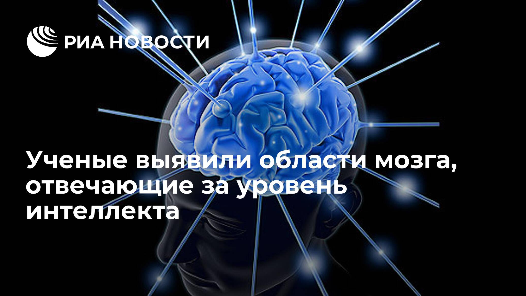 Ученые выявили области мозга, отвечающие за уровень интеллекта